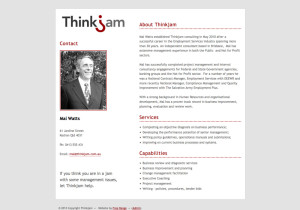 thinkjam-consulting